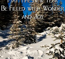 Wishes for a New Year by Bryan Peterson