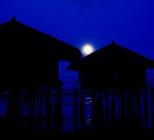 Moonlit Kampong by adng