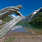 Avalanche Lake by Gary Lengyel