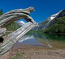 Avalanche Lake by Gary Lengyel