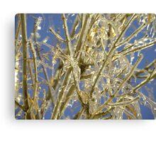 Iced Limbs Canvas Print