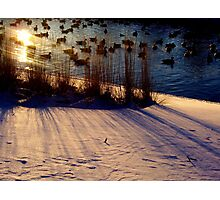 Winter Warmth Photographic Print