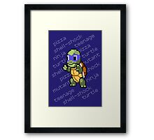 Squirtle Turtle - Leo Framed Print