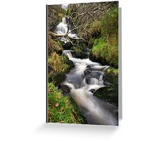 Waterfall and fallen tree Greeting Card