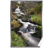 Waterfall and fallen tree Poster