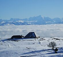 The Mont-Blanc above a sea of clouds by Fran E.