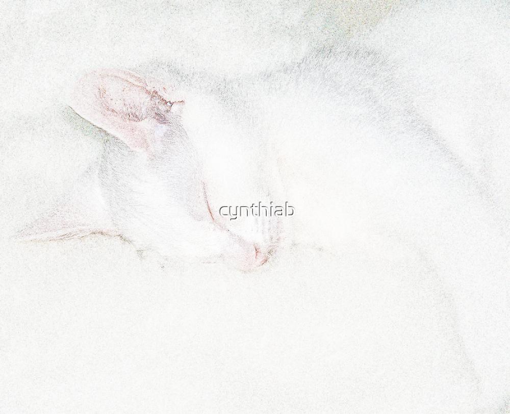 good boy when asleep by cynthiab