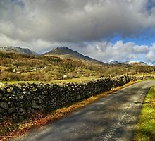 Country Roads - Torver by Jamie  Green
