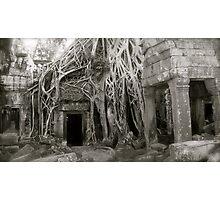 Ta Prohm Inner Temple Photographic Print