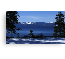 Between The Pines Canvas Print