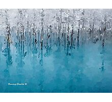 Icy Beauty Photographic Print