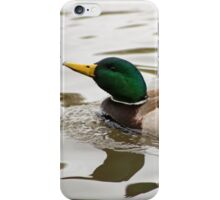 Smiling Drake iPhone Case/Skin