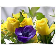 Yellow Roses and Purple Anemones......... Poster