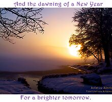 Peace and Hope for the New Year by Patricia Bolgosano