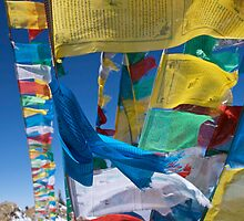 Prayer Flags by David Reid