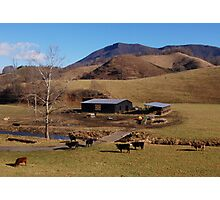 Mountain Farm Photographic Print