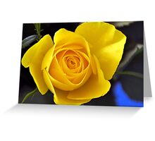 Golden Rose,,,,,,,,,,,,,, Greeting Card