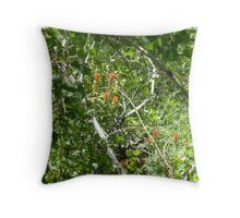 Paintbrush In The Quakies Throw Pillow