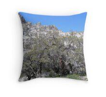Thomas Canyon Mahogany Throw Pillow