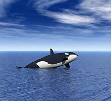 Orca by dmark3