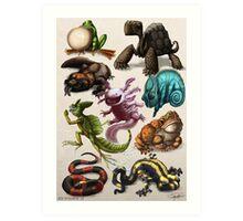 Reptiles & Amphibians Art Print