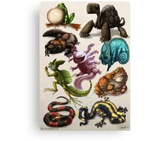 Reptiles & Amphibians Canvas Print