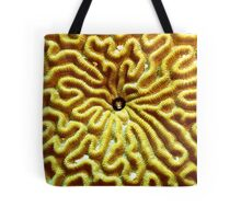 Gobi in Brain Coral Tote Bag