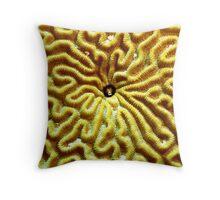 Gobi in Brain Coral Throw Pillow