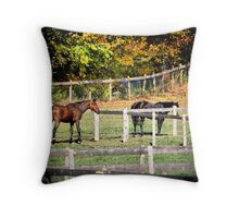 Brown and black Horse In Field Throw Pillow