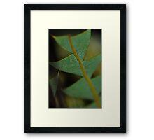 Reptile Plant Framed Print