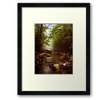 Mist Whispers Framed Print
