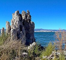 Mono Lake, California, USA by Nancy Richard