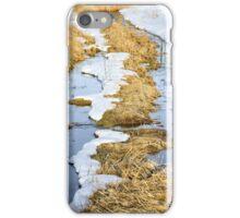 Cherry Creek Snow Melt  iPhone Case/Skin