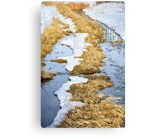 Cherry Creek Snow Melt  Canvas Print