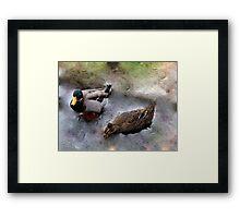 Ducks on Ice (III) Framed Print