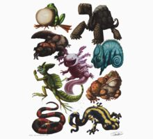 Reptiles & Amphibians  by Ruth Taylor