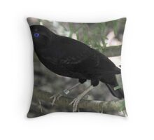 Male Satin Bower Bird IV Throw Pillow