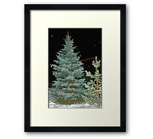 Looking for X-Mas Tree Framed Print
