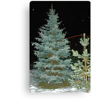 Looking for X-Mas Tree Canvas Print