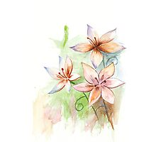 Asiatic lilies Photographic Print