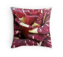 Raspberry Ripple! Throw Pillow