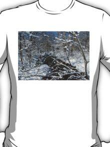Bridal Veil T-Shirt