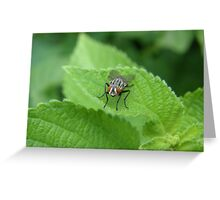 Red Eyes Greeting Card