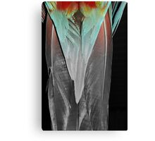 Tuxedo Tails Canvas Print