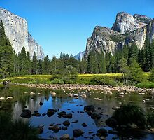 Meadow View  by Brett Williams