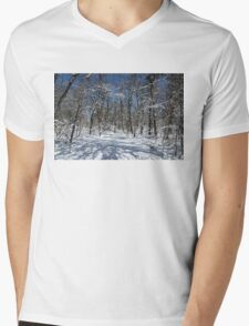 Winter Road Mens V-Neck T-Shirt