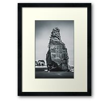 NEW ZEALAND:ELEPHANT ROCK Framed Print
