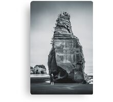 NEW ZEALAND:ELEPHANT ROCK Canvas Print
