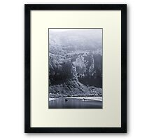 NEW ZEALAND:TWO SEALS PLAYING Framed Print
