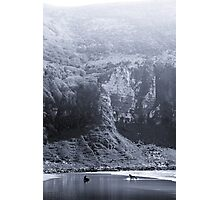 NEW ZEALAND:TWO SEALS PLAYING Photographic Print